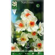 Νάρκισσος Geranium