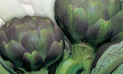 Σπόροι Λαχανικών