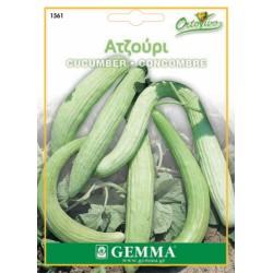 Σπόροι Ατζούρι