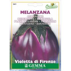Σπόροι Μελιτζάνα