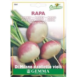 Σπόροι Ρέβα