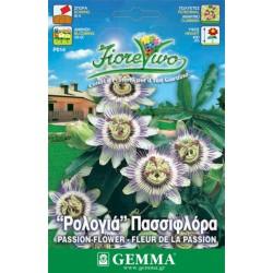 Σπόροι Ρολογιά - Πασσιφλόρα