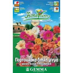 Σπόροι Πορτουλάκα - Μεταξάκι
