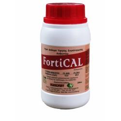 Υγρό διάλυμα Ασβεστίου Fortical, 250ml