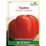 Σπόροι Τομάτα