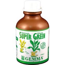 Υγρός Οργανικός Σίδηρος SUPER GREEN, 250ml