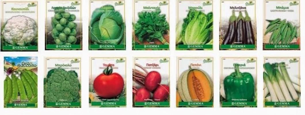 Συνθήκες Καλλιέργειας-Σποράς Λαχανικών